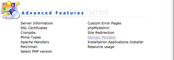 "Access ""Domain pointers"" under ""Advanced Features"" menu"